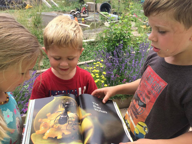 Three kids in a garden looking at a book with a picture of ant on it